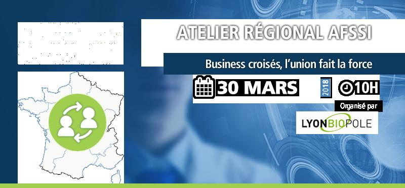 Atelier régional Lyonbiopôle - AFSSI - Atelier régional Lyonbiopôle - AFSSI - Business croisés, partagez vos forces pour réussir !